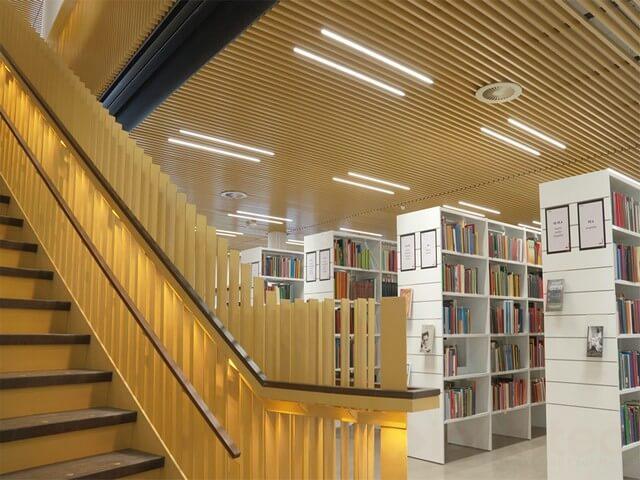 strip light in bookstore