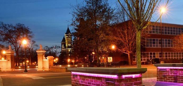 led linear light use in city park lighting (4)